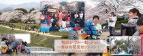 桜舞う鴨川でセッション!