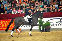 Preisspitze der Reitpferdeauktion wurde der Wallach Sylvester von Sir Donnerhall I- Foto: Schroeder