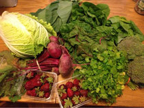 This Week's CSA Box