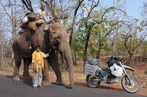 Der Grosse hat immer Vorfahrt in Indien.