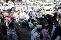 Mopeds, immer gern gesehen im Jemen.