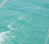 Blaues Wasser mitten auf dem Bodensee