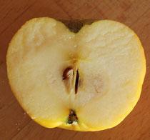 Ein Apfel ist mit dem Aufbau der Erde vergleichbar