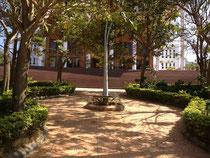 インド留学 大学のキャンパス