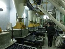 インド・デリー郊外の製粉工場 インドビジネス視察にて撮影