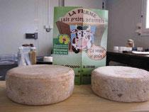 Castétis, fromage lou cap bourut