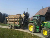 Kranwagen beim Holztransport