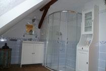 Blick ins Bad mit Dusche und WC