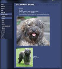 Quelle: Website Dschowo's, Oktober 2009