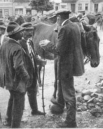 Masurischer Pferdemarkt