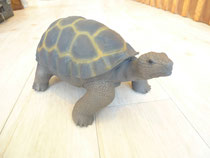 RUBBER ANIMALS/Turtle/3990yen