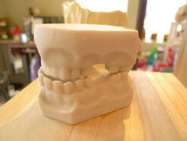 TOOTH DECORATION/sign holder