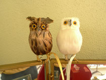owl/white,brown,black/950yen