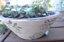 soil bowl planter/S2730yen,L3990yen