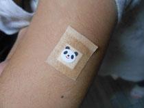 パンダの絆創膏を貼ってもらいました