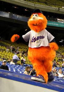 Youppi, la mascotte al tempo degli Expos