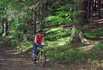 Radfahren im Bayerwald
