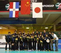 2013年世界U-23女子バレーボール選手権大会