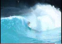 Screenshot eines YouTube Videos vom Surfpool