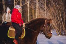 конные прогулки; катание на лошадях