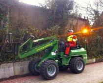 www.die-gruendlichen, Springe, Ihr Prtner für Baumpflege