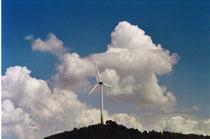Windrad auf dem Fröttmaninger Berg