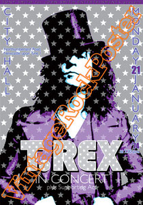 marc bolan,t rex, glam rock, rock n roll, 70s, poster, affiche, vintage rock posters, manifesto,newcastle, 1974, brian eno, david bowie, 20th century boy,children of revolution