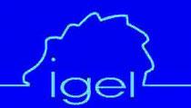 Individuelle Gesundheitsleistungen  - IGEL