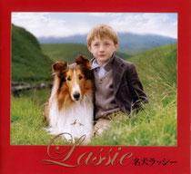 名犬ラッシー(2005年リメイク版映画の画像。犬種はコリー)