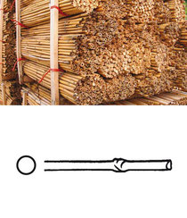 bambo stakes