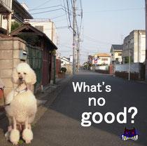 2ndDEMO 「What's no good」