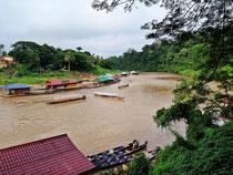 Die bewaldeten Ufer von Kuala Tembeling