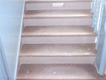 Treppe (abgenutzte Versiegelung) Trittstufe abschleifen