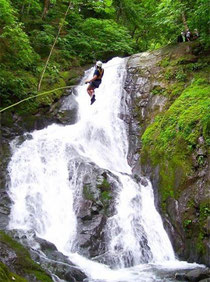 11 Waterfalls Canopy