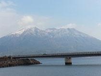 今日の桜島です。