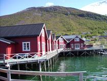 Lyngen Havfiske Camp
