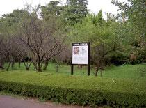 円正寺跡の現在の風景