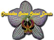 Logo Orchihidée Seine Saint Denis