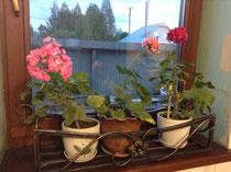 подставка для цветов цветочница тюмень купить