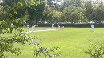 Berne Cricket Ground