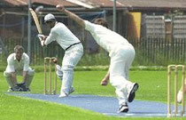 Swiss cricket in action