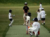 Swiss junior cricket