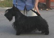 10.01.2007, вл.Инна Ковалева (Беларусь)