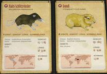 Tierkarten: Schlitzrüssler & Gundi
