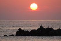夕日の湯の浜温泉
