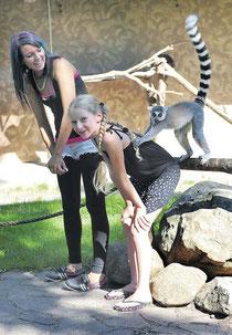 Afrika-Wochenende im Magdeburger Zoo – das machte auch den Tieren Spaß: Ein zu den Halbaff en gehörender Katta klettert auf den Rücken von Joleen, und Georgina freut sich mit