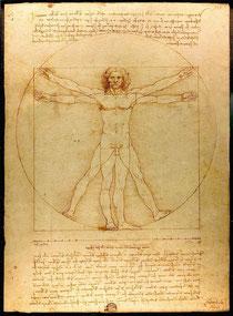 L'homme de Vitruve, 1492.