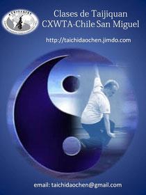 taijiquan, tai chi, chen, chuan, yin, yang, tui, shou, sijin, clases, practicas, san miguel, beneficios, principios, marcial, instructor, wctag, jan, silberstorff, xiaowang