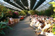 Botanischer Garten Hamburg Musik Lyrik Career Center Der