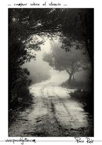 ... caminar sobre el silencio ...